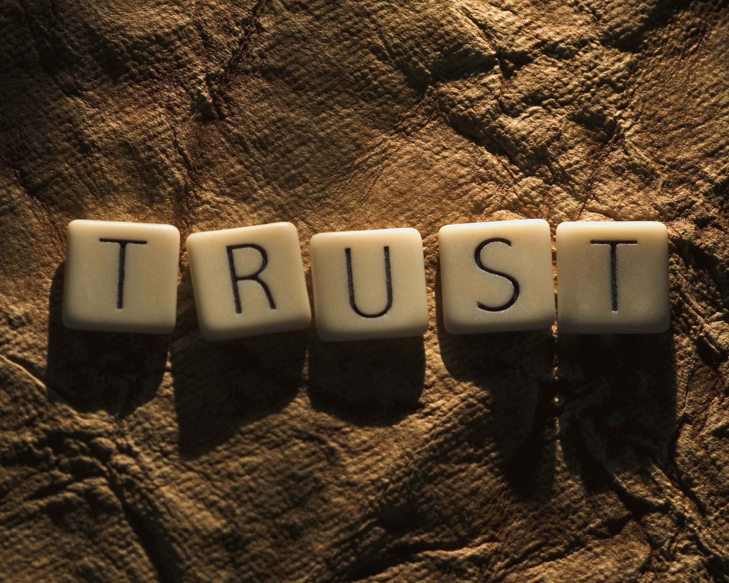 when trust is absent suspicion rules toughsledding